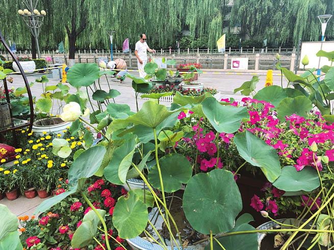 """第十一届""""水之韵""""文化节在太原市西海子公园举办"""
