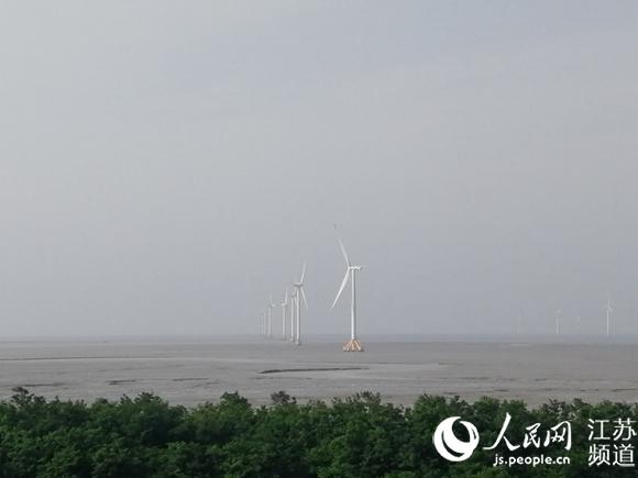 """江苏如东:建绿色能源新城 """"海上三峡""""正崛起"""