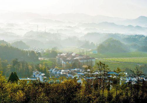 四川省成都市乡村规划探索与实践