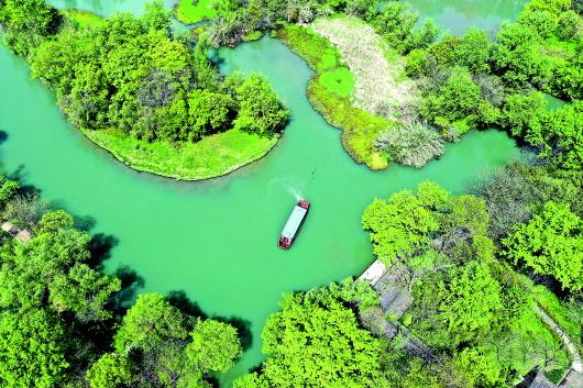 西溪湿地:从污水横流到城市生态建设标杆