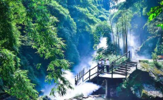 """可""""穿越""""至龙门山生物多样性博览园 天府川西竹海推出高空全景走廊"""
