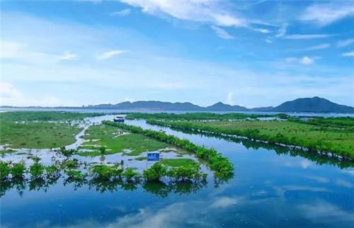 海南召开海洋生态保护修复项目推进现场会